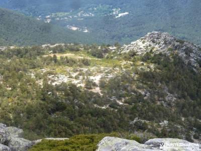 Siete Picos[Serie clásica]:Sierra del Dragón;foro montaña tierra de pinares berrea del ciervo